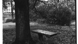 George Mifsud, Larundel No.13 [Seat Under Trees] 2005, gelatin-silver print 18 x 18cm Darebin Art Collection.