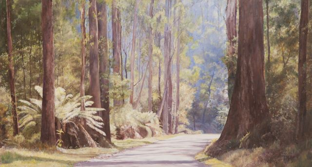 June Madden 2006 The Sunlit Forrest