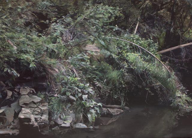 Shannon Smiley, Darebin Creek2017, Oil on canvas,100 x 140 cm, Darebin Art Collection.