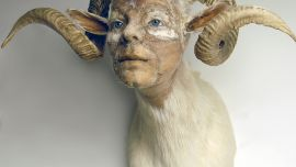My Monster: The human animal hybrid, RMIT Gallery, 28 June – 18 August, 2018 Caption: Kate Clark, And She Meant It, 2010 Medium: Ram hide, apoxie, clay, foam, thread, pins, rubber eyes Size: 26 x 25 x 21 inches. Photo courtesy of the artist.