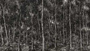 Peter Gardiner North / Black Lung, 2016 Oil on board 60.2 x 270cm Collection Gippsland Art Gallery