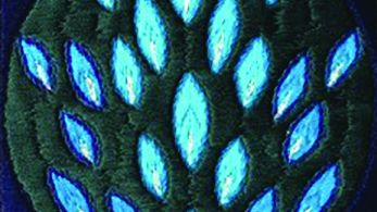 Ann GREENWOOD, The Peacock Garden [detail] 2004. Embroidery, 16 x 16cm. Courtesy the artist.