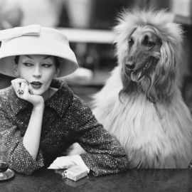 Dovima with Sacha, cloche and suit by Balenciaga, Café des Deux Magots, Paris, 1955. Image © The Richard Avedon Foundation.