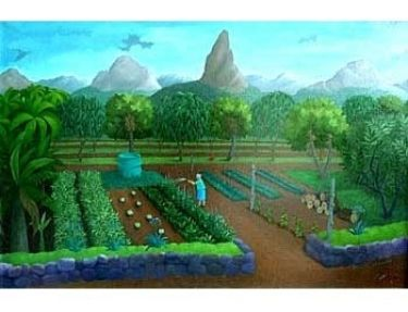 Anne Marie Graham, Vegetable Garden, Glasshouse Mountains, 1984, oil on canvas. Gift of Mr L. H. Ledger, 1987